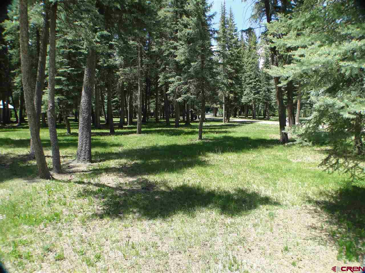 1000-Mushroom-Lane Vallecito Lake/Bayfield Real Estate