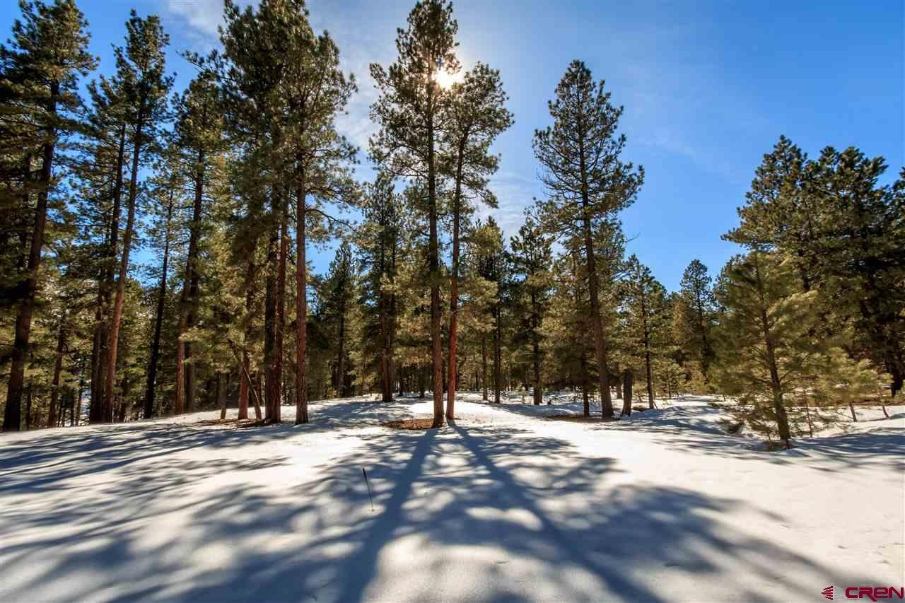 Vallecito Lake/Bayfield Real Estate 67-Red-Bluff-Road-Drive - 729077