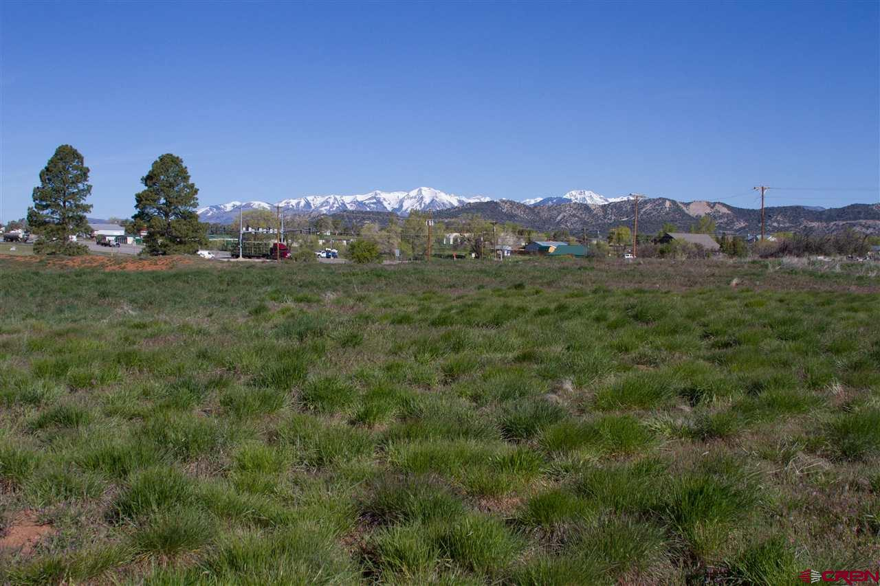 30616-HWY-160 Durango Real Estate