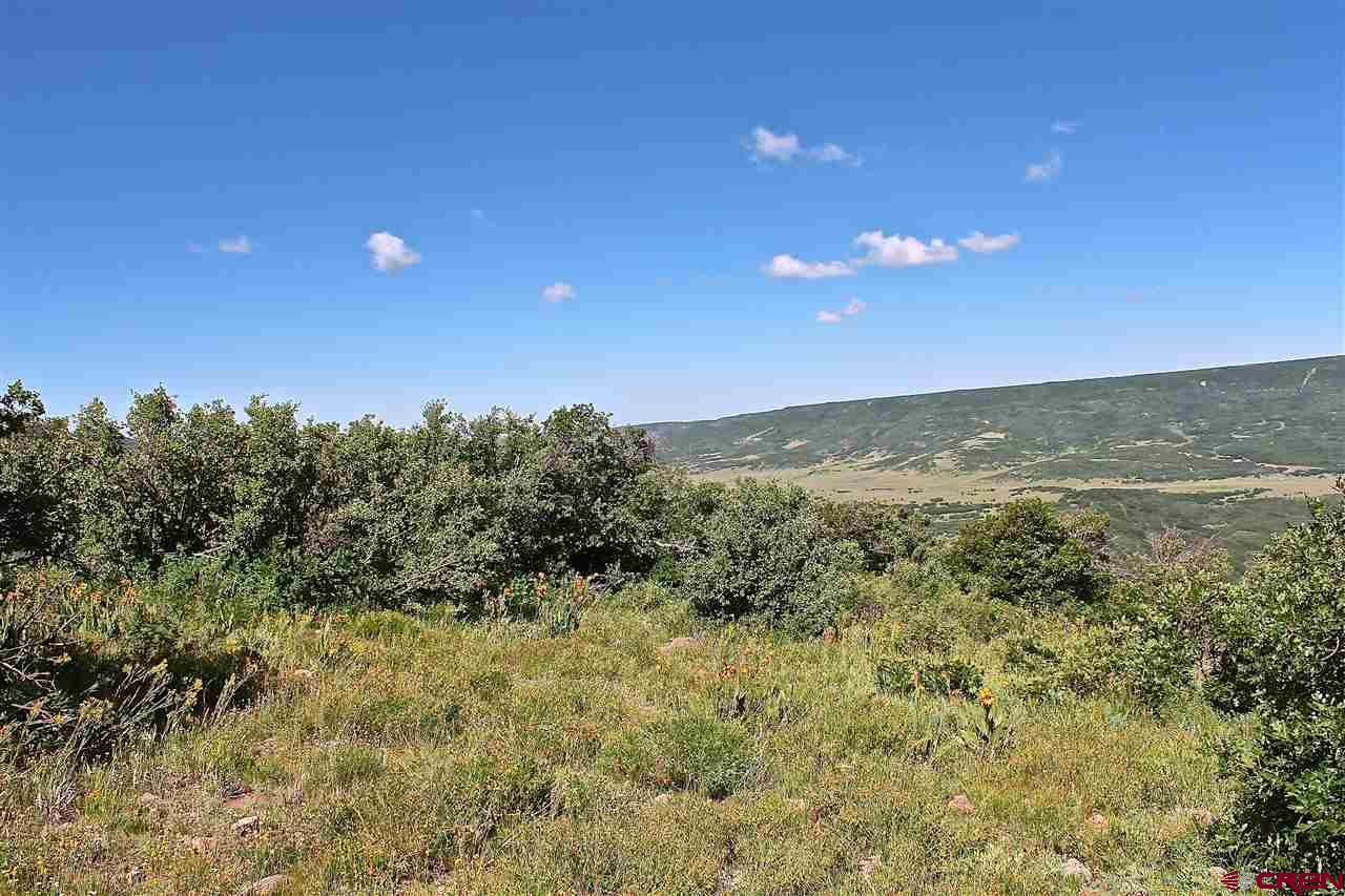 10050-County-Road-29-Lot-#-53 Dolores Real Estate