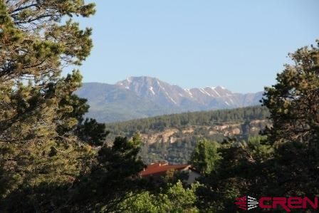 571-CR-239 Durango Real Estate