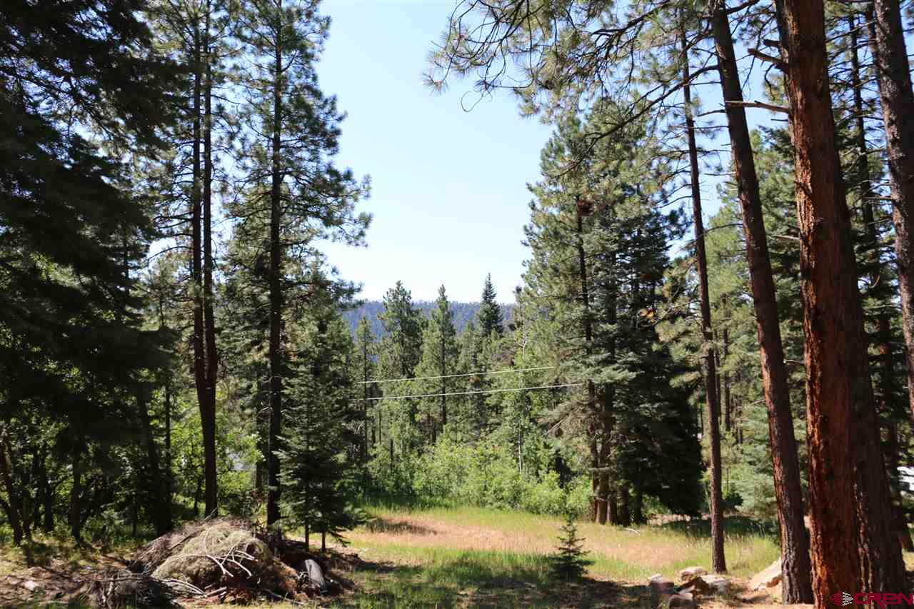 Lot-11-Elk-Lane Durango Real Estate