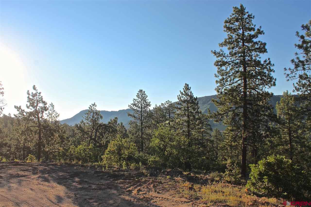 Durango Real Estate 339-Big-Bear-Trail - 735627
