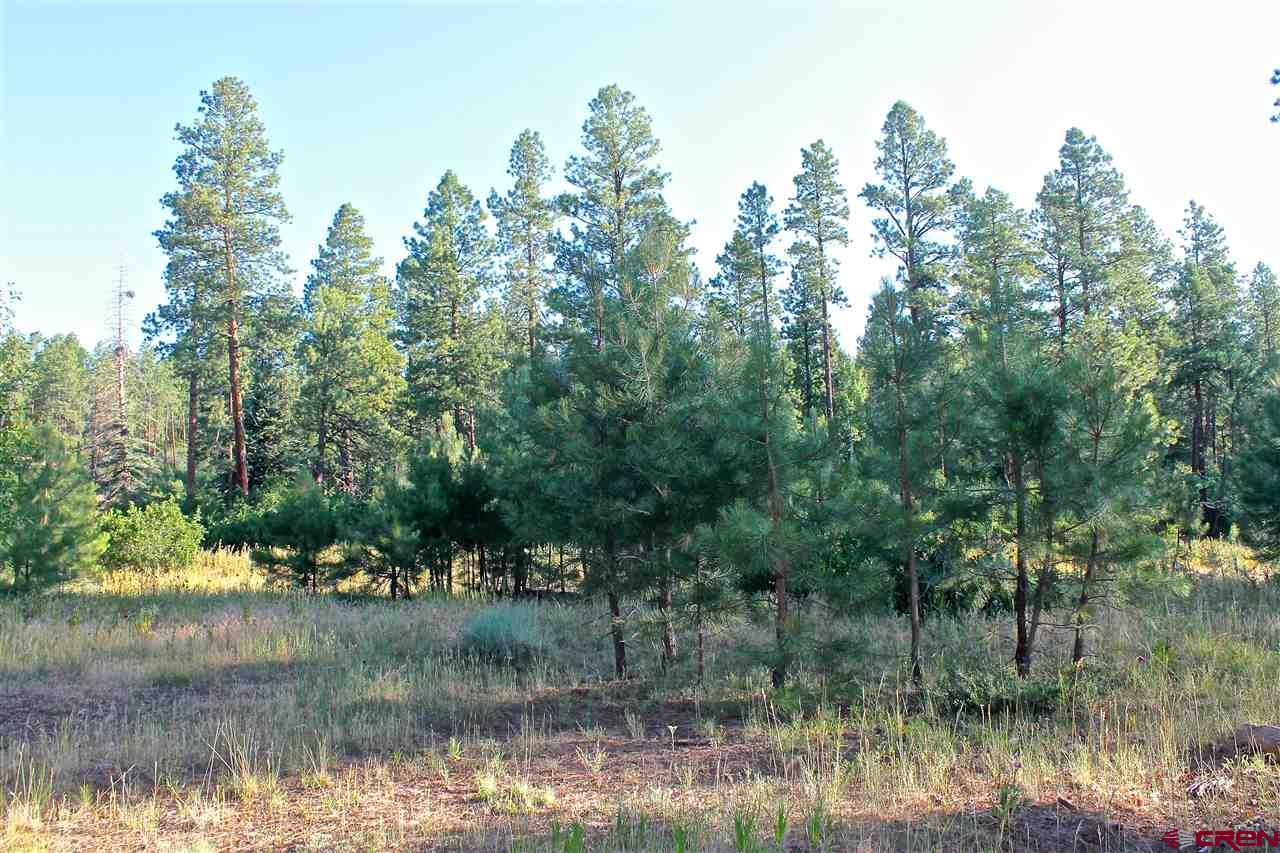Durango Real Estate TBD-Little-Bear-Trail - 735630