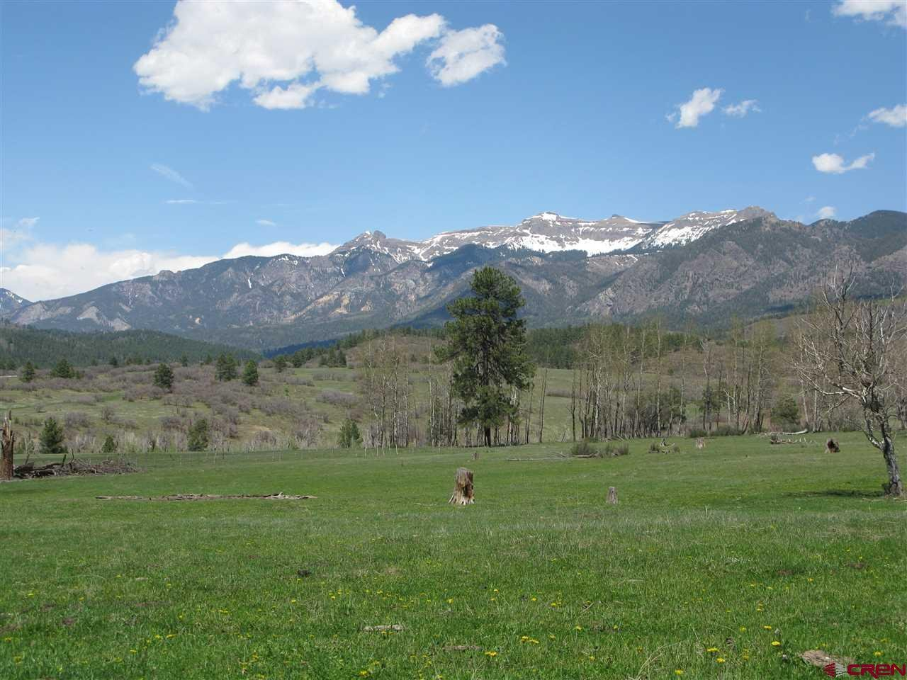 TBD-Albert-Place Pagosa Springs Real Estate