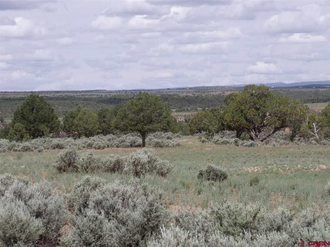Hesperus Real Estate TBD-County-Road-136 - 740581