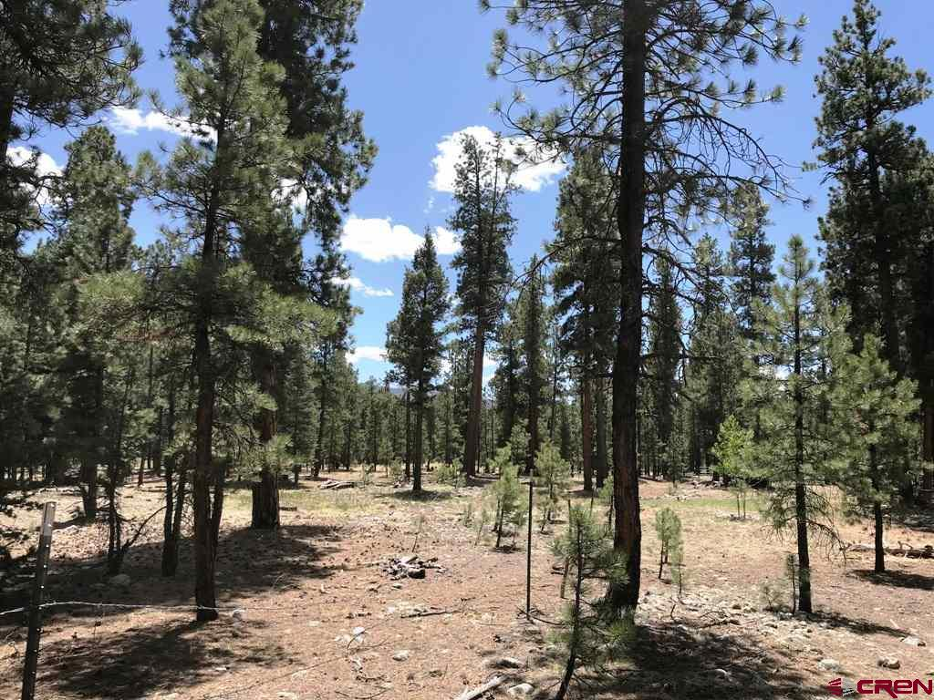 TBD-Ranch-Road Vallecito Lake/Bayfield Real Estate