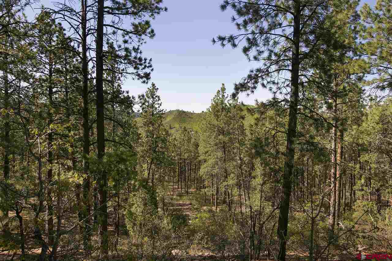 116-Cabin-Creek-Drive Durango Real Estate