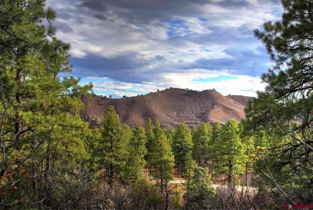 Durango Real Estate 175-Cabin-Creek-Drive - 745886