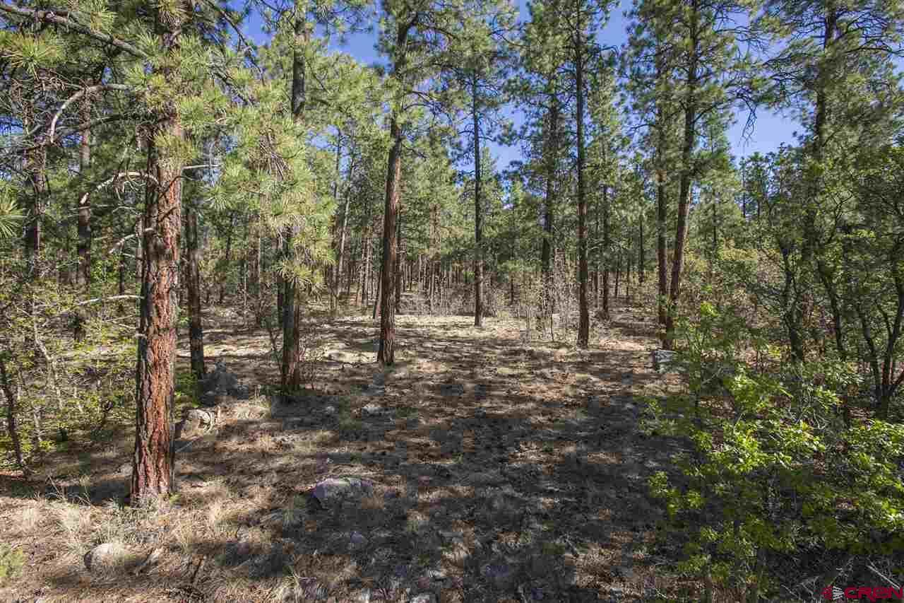Durango Real Estate 208-Cabin-Creek-Drive - 745889