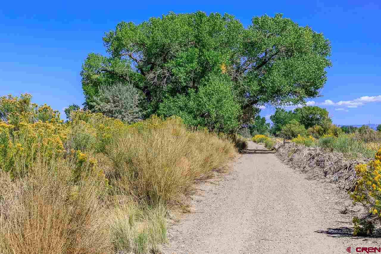TBD-Road-E Cortez Real Estate