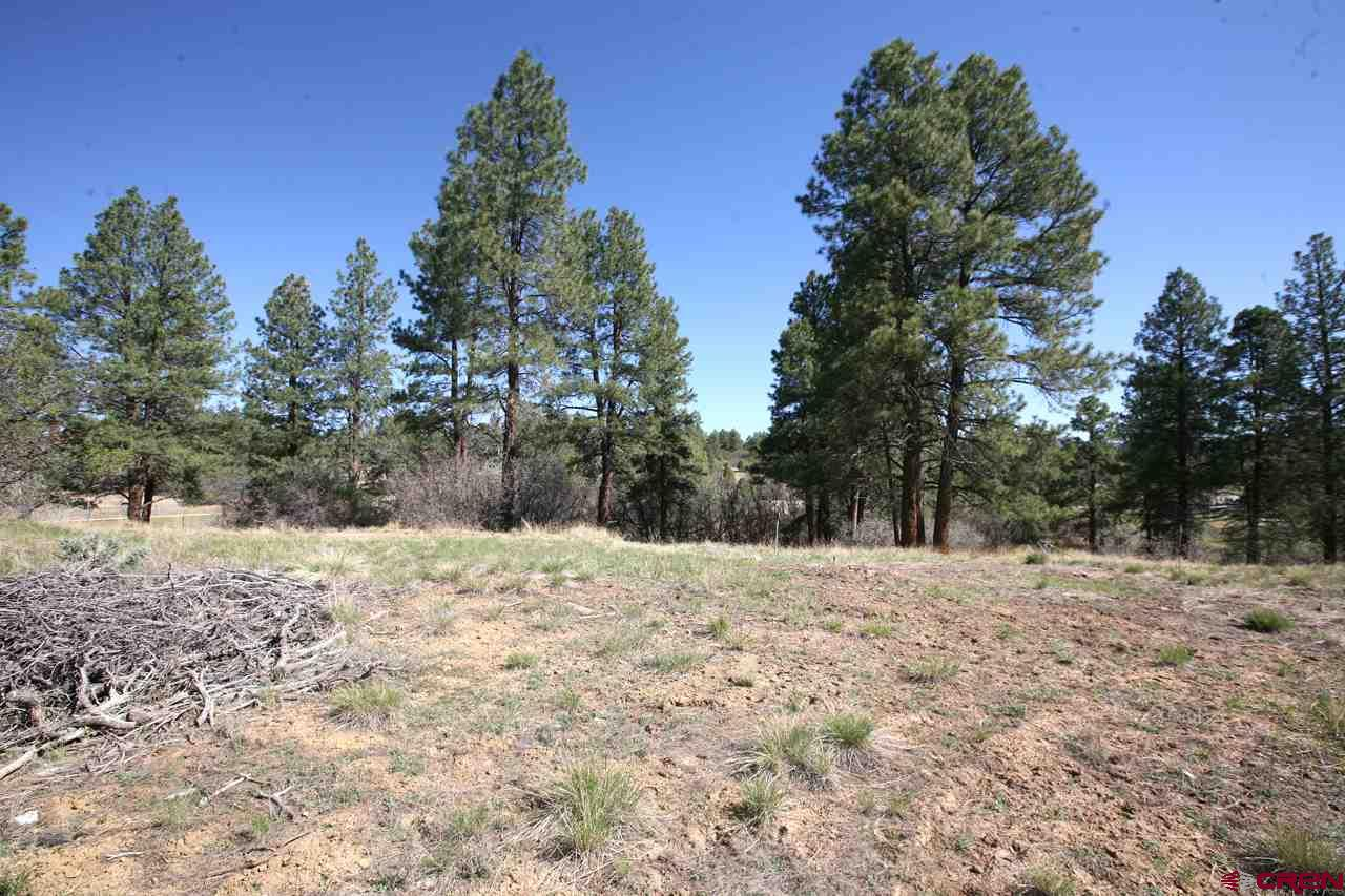 Durango Real Estate 102-South-Fork-Road - 752485