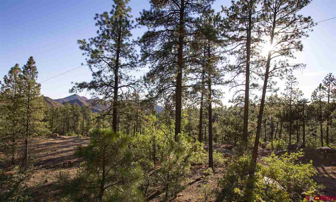 Durango Real Estate 407-Edgemont-Highlands-Boulevard - 752513