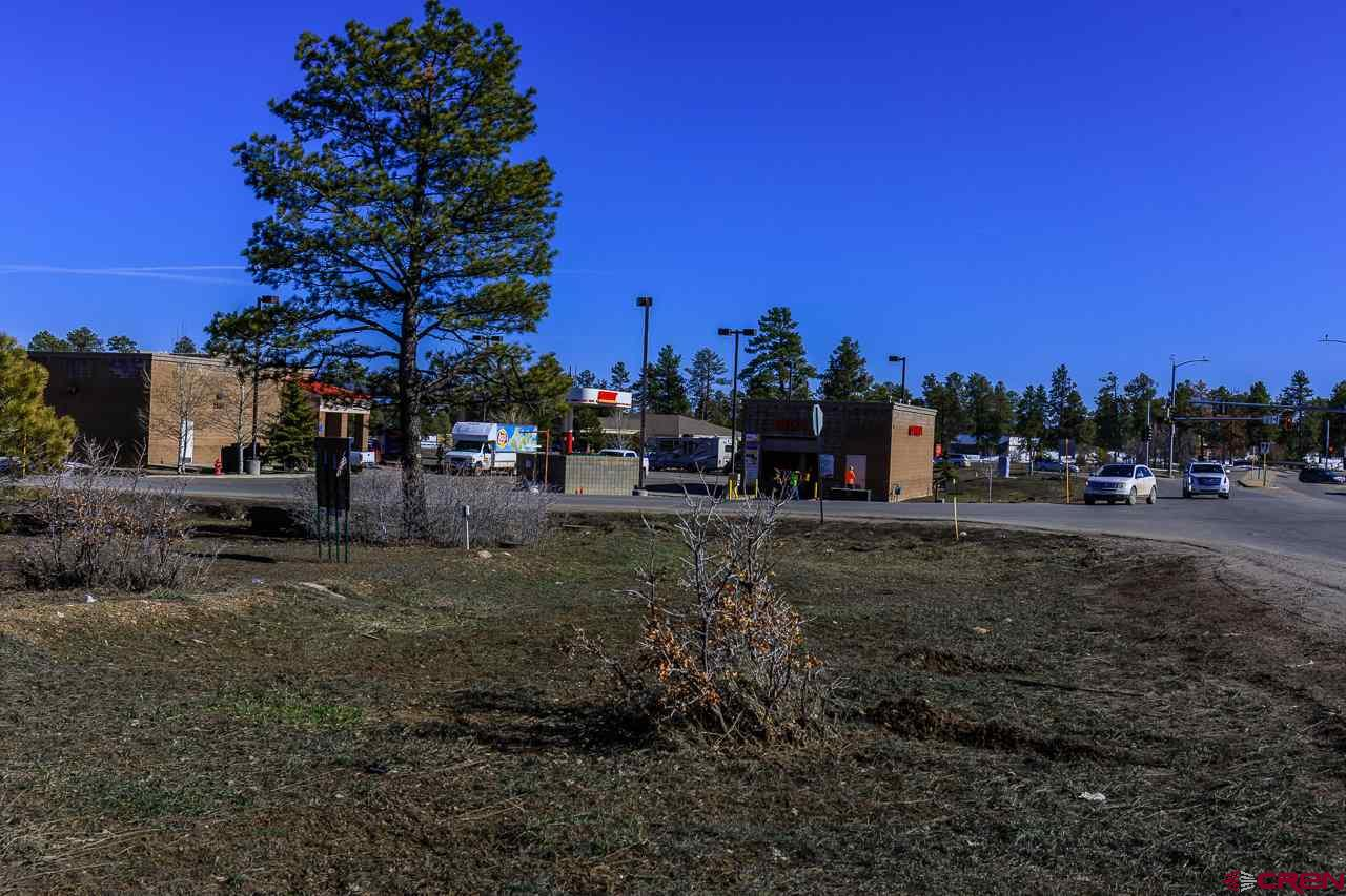 Corner-of-Eagle-Dr-&-CR-600 Pagosa Springs Real Estate