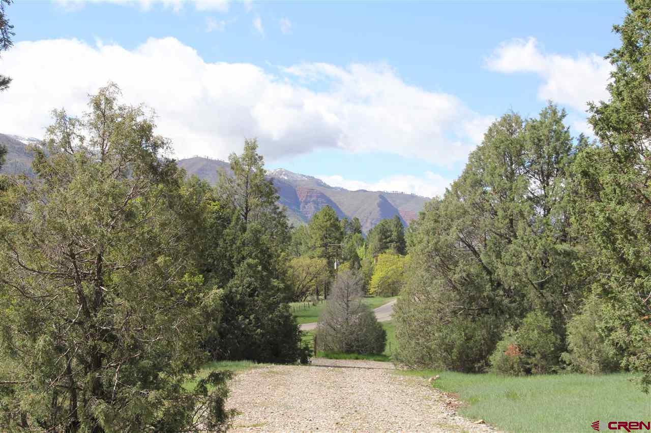 Durango Real Estate 13684-CR-250 - 755445