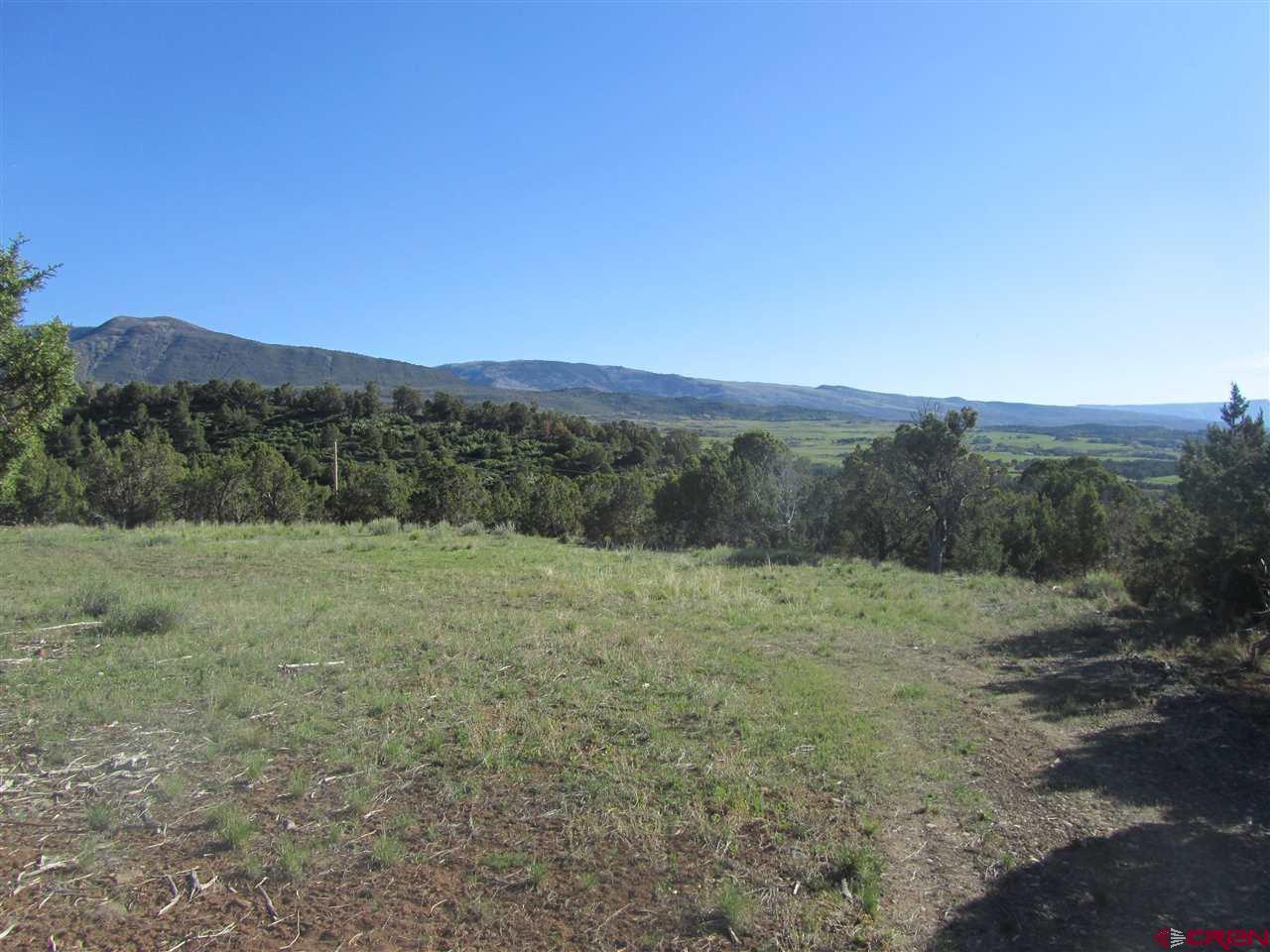 55999-KK-Road - Molina - CO