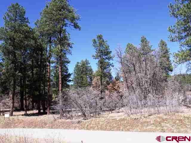 Durango Real Estate 47-Needle-Creek-Court - 756270