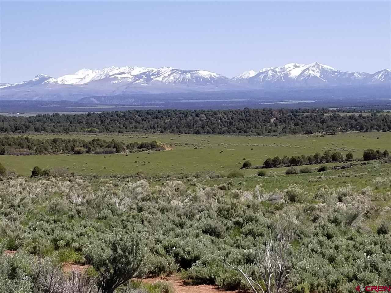 TBD-County-Road-100 Hesperus Real Estate