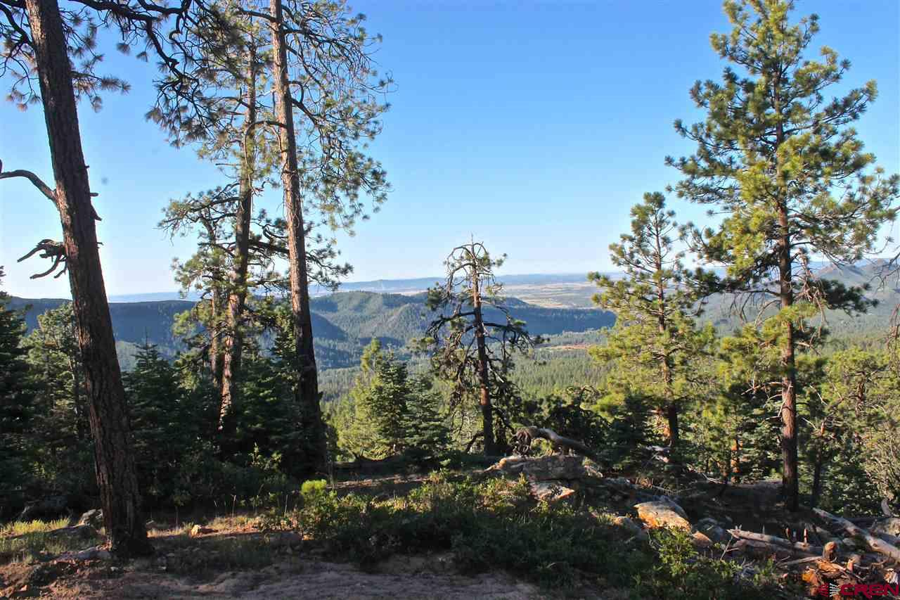TBD Taylor Ranch Road, Durango Real Estate