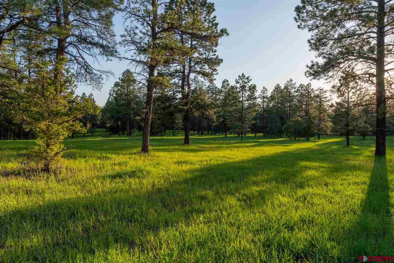 TBD Road 36.5, Mancos Real Estate