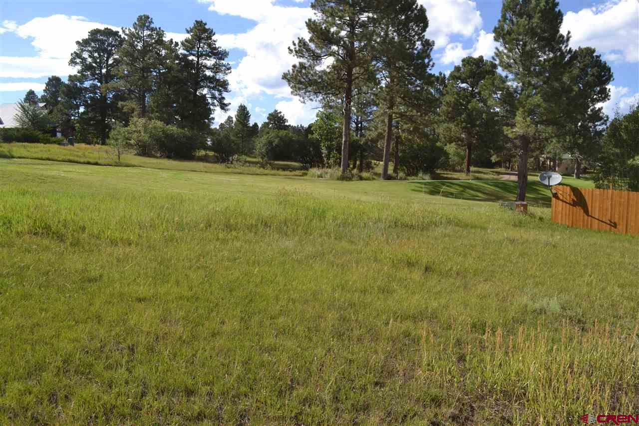 66 Pines Club Place, Pagosa Springs Real Estate