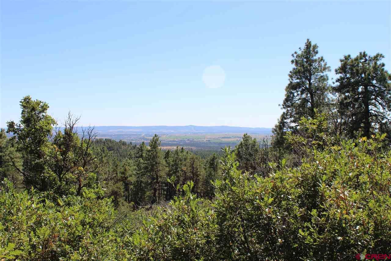 Durango Real Estate TBD-Vista-Grande-Way - 763166