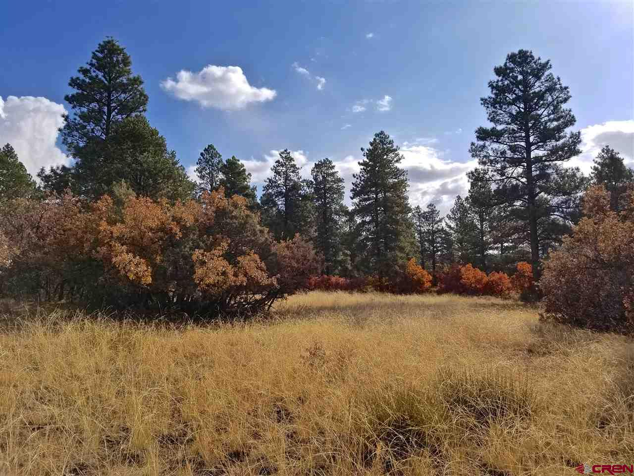 TBD-Rendezvous-Trail Hesperus Real Estate