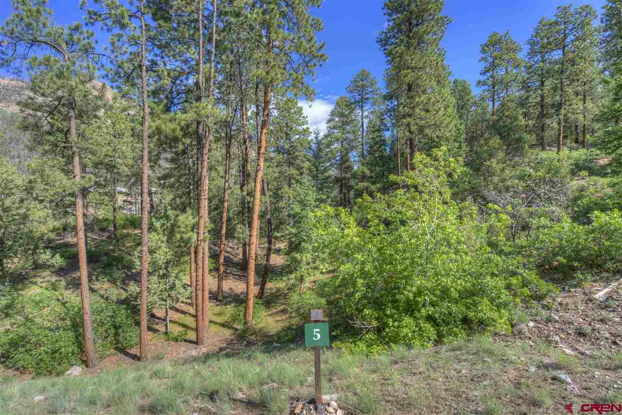 242-Glacier-Cliff Durango Real Estate
