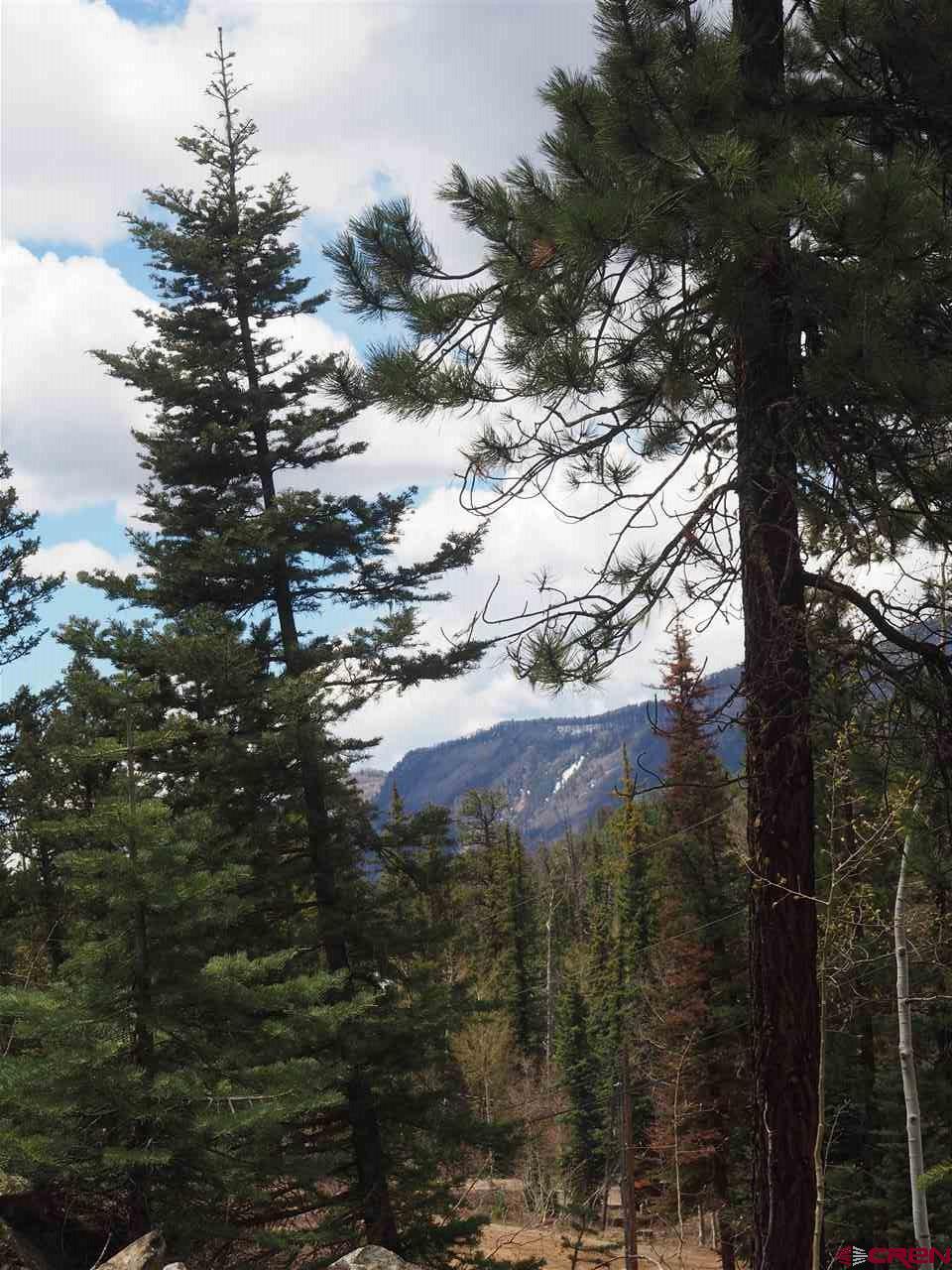 1420-Lake-Purgatory-Drive Durango