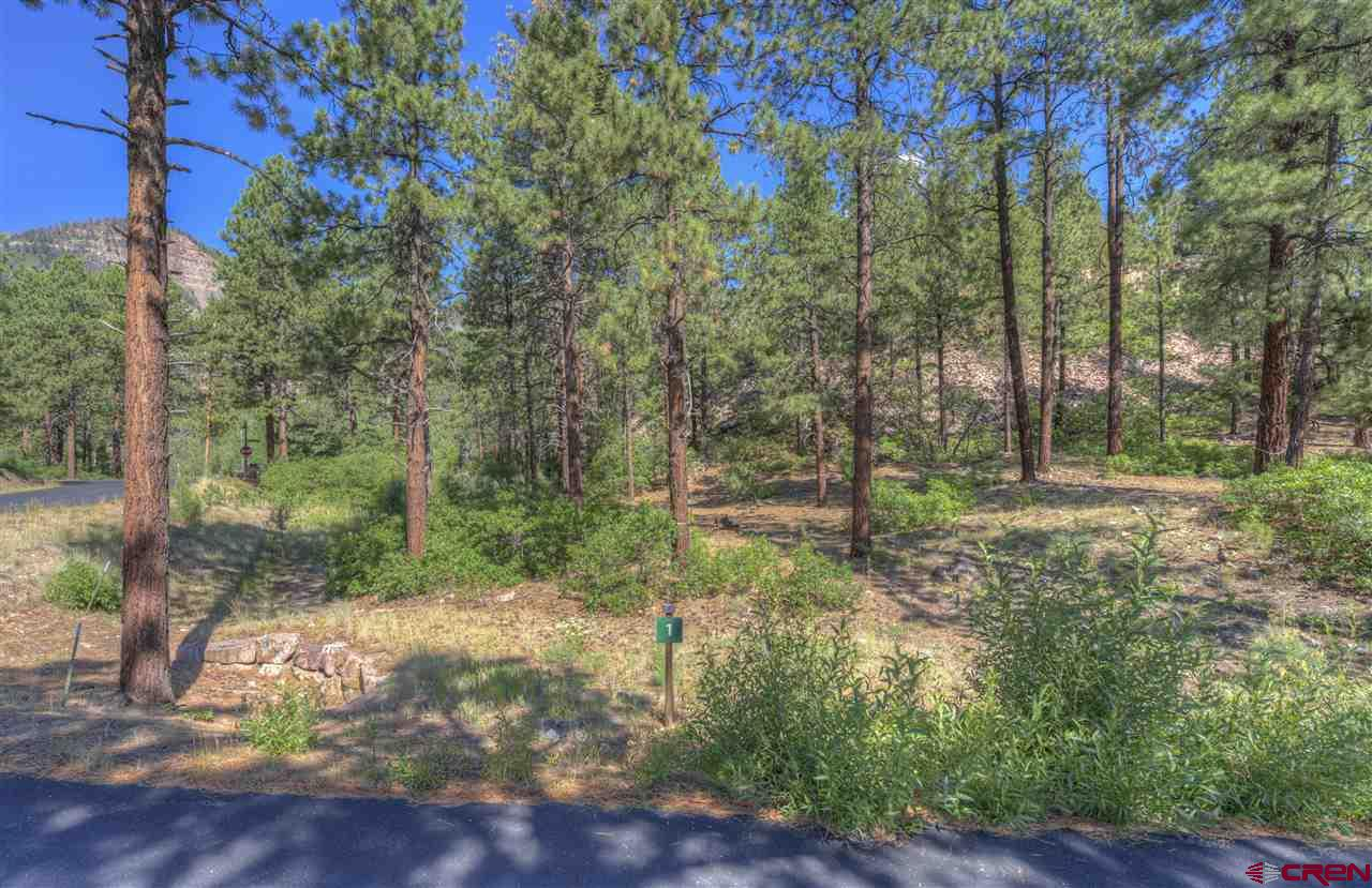 Durango Real Estate TBD-Ambush-Canyon - 765366