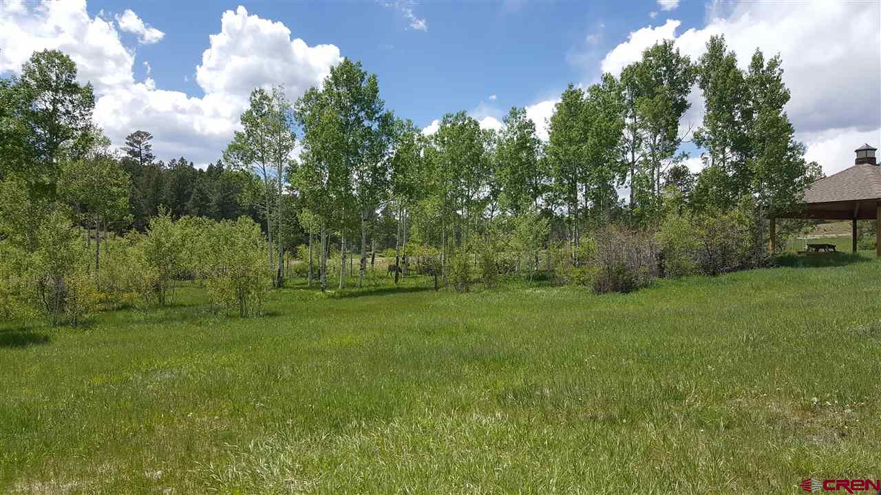 84,96,114 Dylan Drive, Pagosa Springs Real Estate