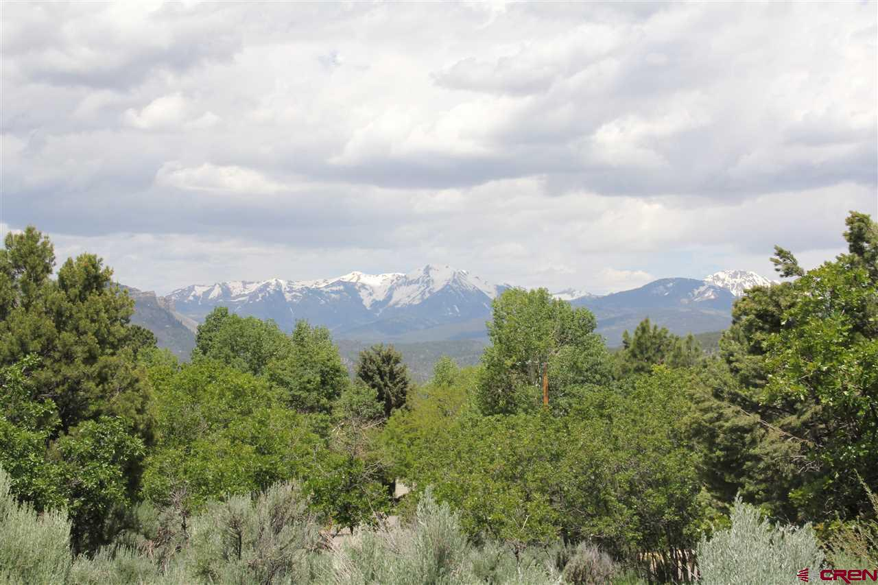 Durango Real Estate 474-Hillcrest-Drive - 771696