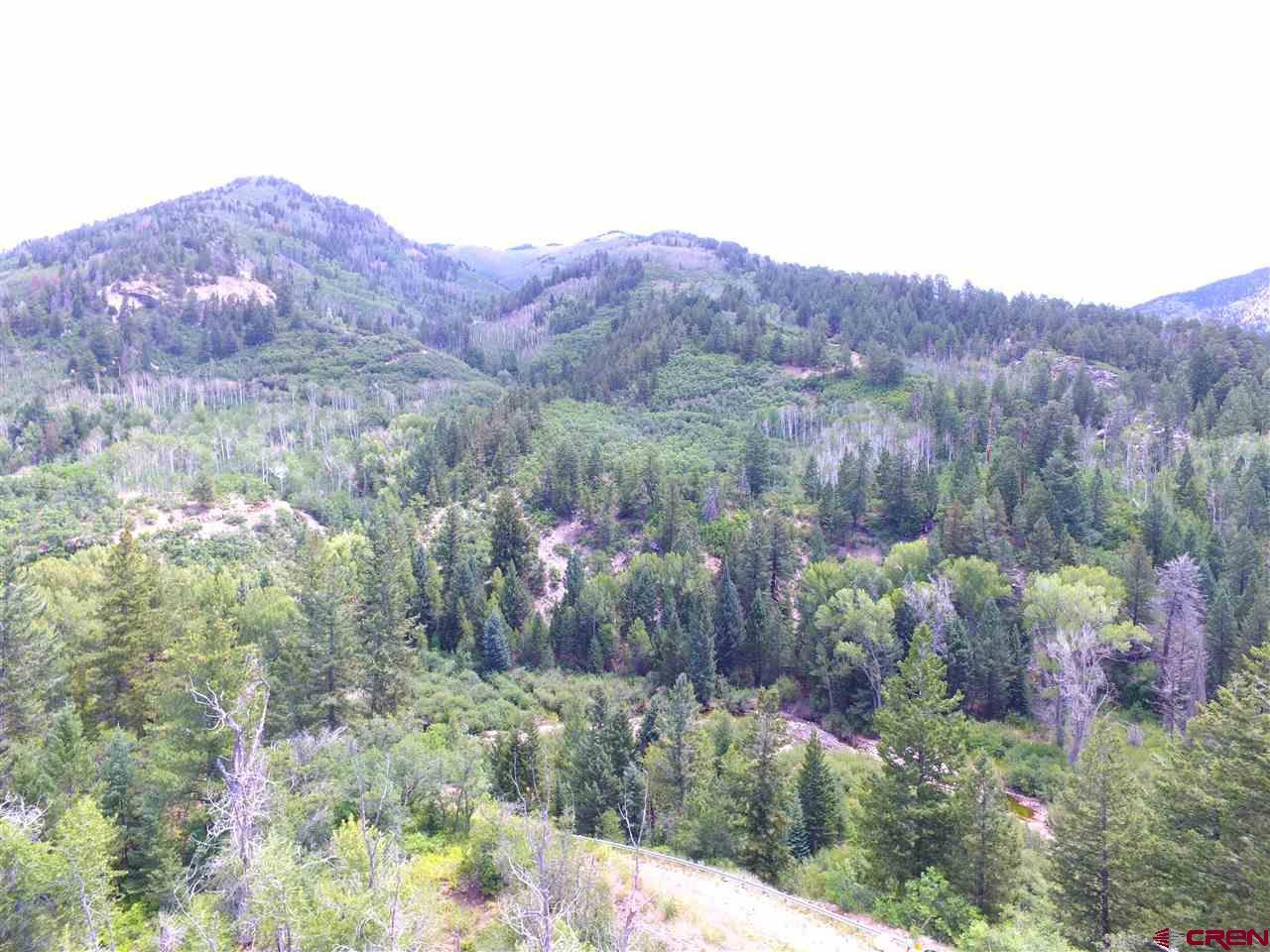 Durango Real Estate 2218-Incas-Mine-Road - 772420