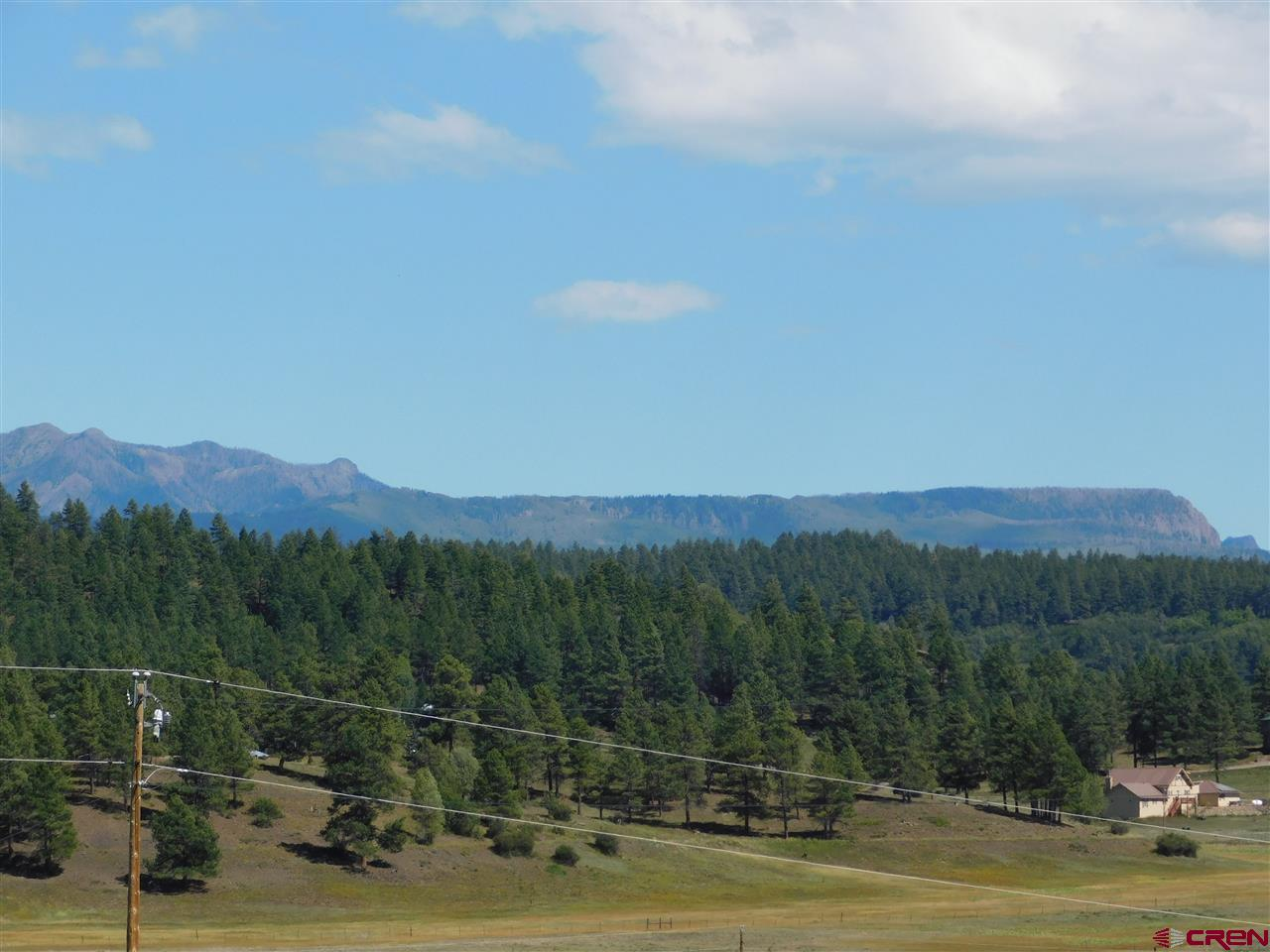 75 Dandelion Court, Pagosa Springs Real Estate
