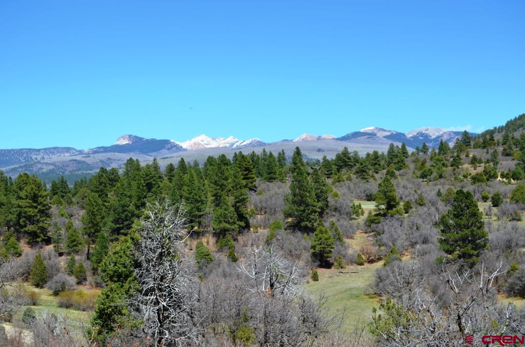 Mancos Real Estate TBD-S-Road-46 - 773294