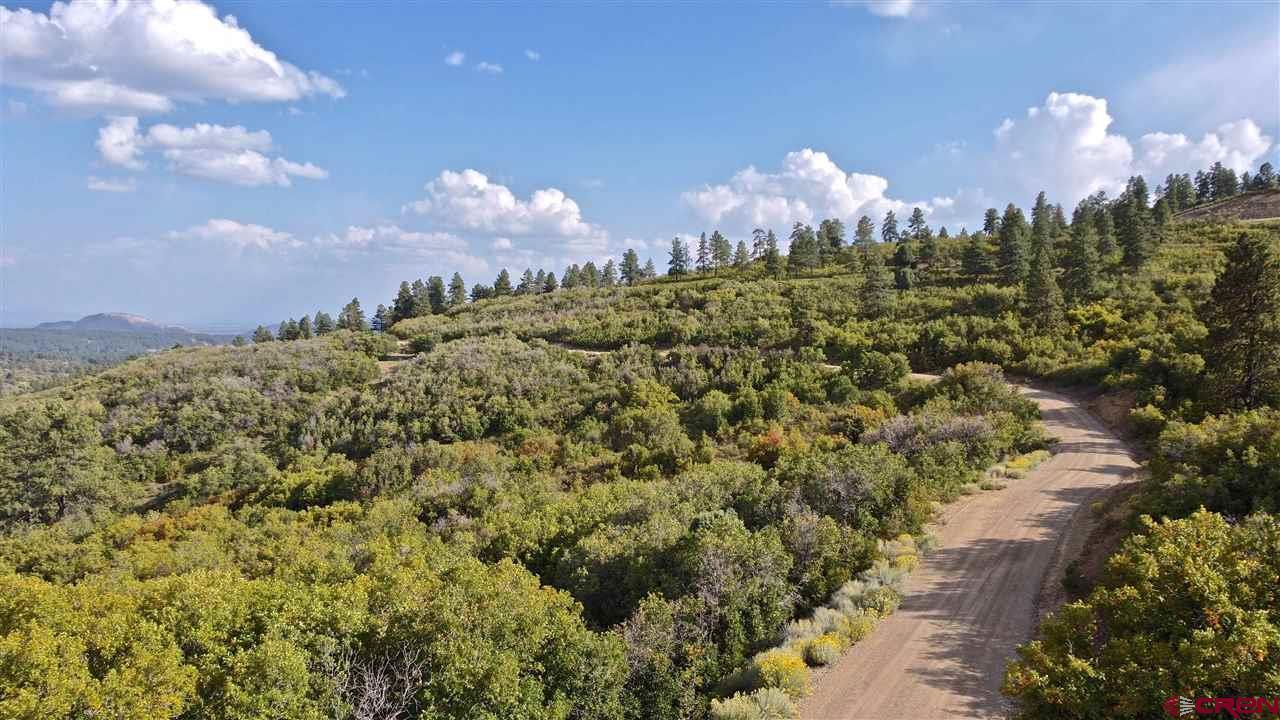 Durango Real Estate Lot-#-37-W-Durango-Ridge-Road - 774820