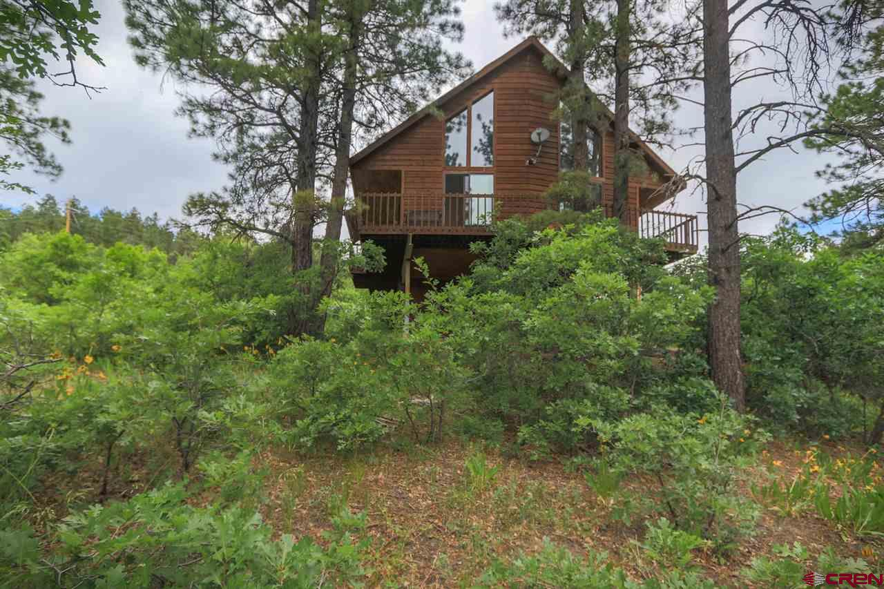 204 Swiss Village Drive, Pagosa Springs Real Estate