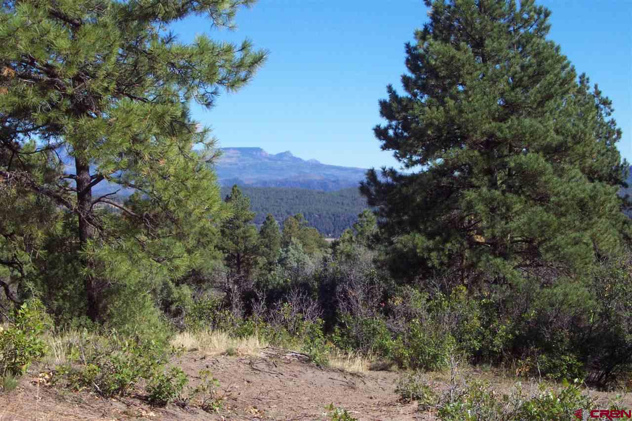 313 Cool Pines Drive, Pagosa Springs Real Estate