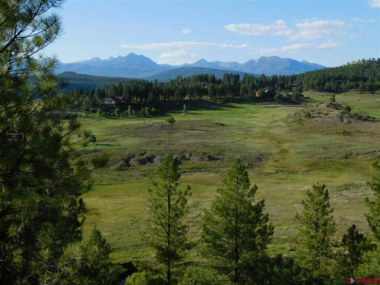 X County Road 302, Pagosa Springs Real Estate