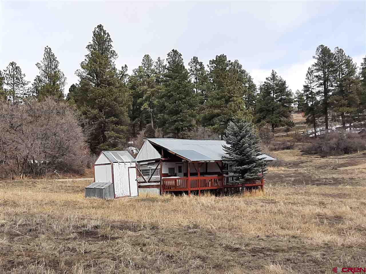 1453 Badger Road, Pagosa Springs Real Estate