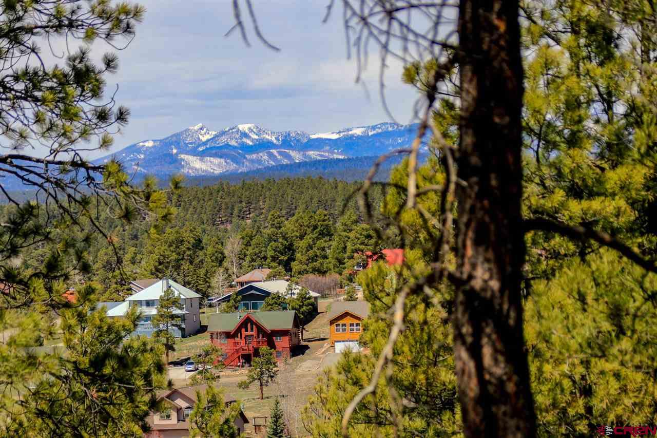 383 Handicap Avenue, Pagosa Springs Real Estate