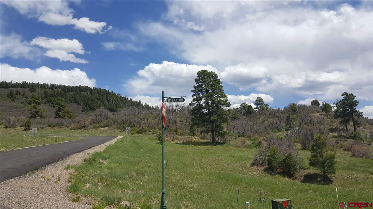 84 Dylan Drive, Pagosa Springs Real Estate